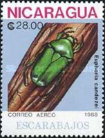 [Airmail - Insects, Typ CAR]