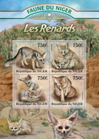 [Fauna of Niger - Foxes, Typ ]