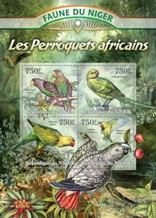 [Fauna of Niger - Parrots, Typ ]