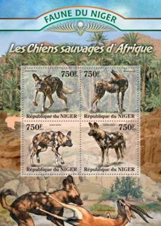 [Fauna of Niger - Wild Dogs of Africa, type ]