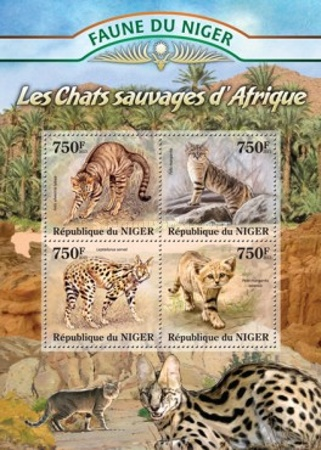 [Fauna of Niger - Wild Cats of Africa, Typ ]
