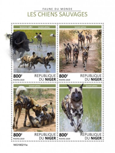 [Fauna - Wild Dogs, type ]