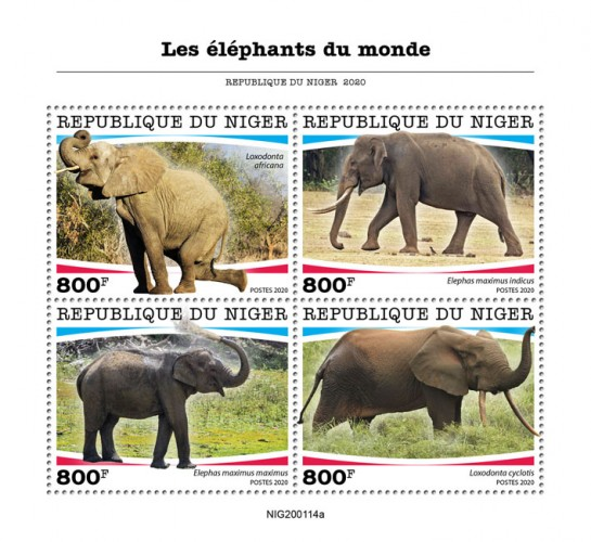 [Fauna - Elephants of the World, type ]