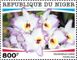 [Flowers - Orchids, type JGR]