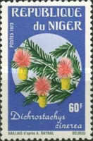 [Rare African Flowers, Typ MD]