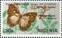 [Nigerian Butterflies, type MC]