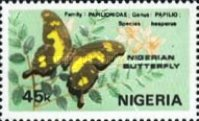 [Nigerian Butterflies, type MD]