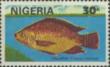 [Nigerian Fish, type ST]