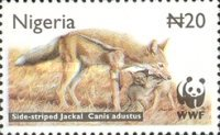 [Endangered Species - Side-Striped Jackal, type ZU]
