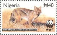 [Endangered Species - Side-Striped Jackal, type ZV]