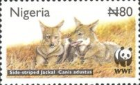 [Endangered Species - Side-Striped Jackal, type ZW]