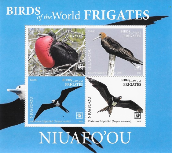 [Birds of the World - Frigates, type ]