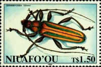 [Insects, type GS]