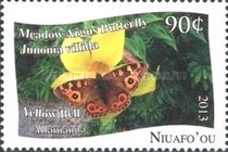 [Butterflies - White Background, type PC]
