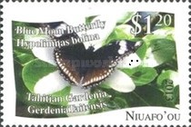 [Butterflies - White Background, type PE]