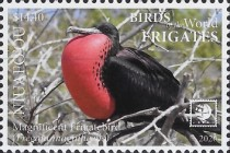 [Birds of the World - Frigates, type WC]