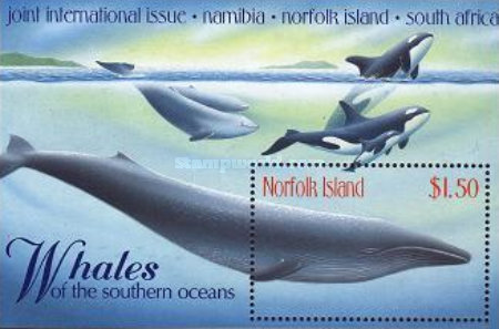 [Whales of the Southern Hemisphere, Typ ]