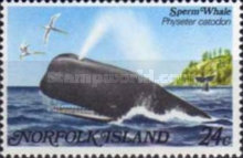 [Whales, Typ ID]