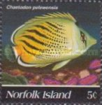 [Butterflyfishes, Typ TH]