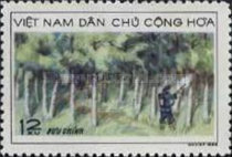 [North Vietnamese Timber Industry, Typ QR]