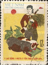 [Agricultural Economy, Typ ST]