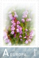 [Personalized Stamp, type AWH]