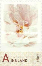 [Personalized Stamp - Self Adhesive, Typ AYM]