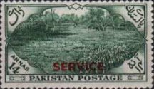 [The 7th Anniversary of Independence - Pakistan Postage Stamps of 1954 Overprinted