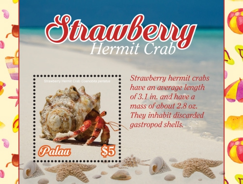 [Marine Life - Strawberry Hermit Crab, type ]