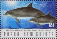 [Protected Species - Dolphins, type AJF]