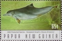 [Protected Species - Dolphins, type AJG]
