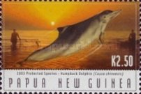 [Protected Species - Dolphins, type AJJ]