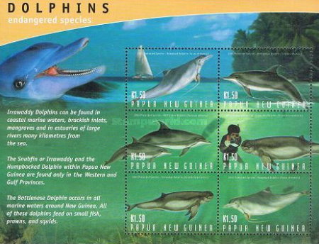 [Protected Species - Dolphins, type AJQ]