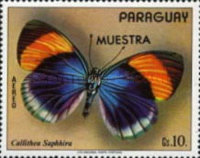 [Airmail - South American Butterflies, Typ AYC]