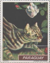 [Airmail - Cats, Typ AYS]