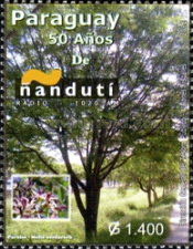 [The 50th Anniversary of Nanduti Radioq, Typ EWN]
