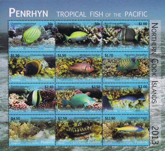 [Tropical Fish of the Pacific - Without White Frame, type ]