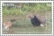 [Birds of Prey - White Frame, type AAB]
