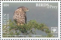 [Birds of Prey - White Frame, type AAC]