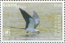 [Birds of Prey - White Frame, type AAE]