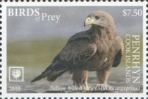 [Birds of Prey - White Frame, type AAK]