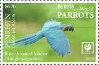 [Birds of the World - Parrots - White Frame, type AAV]