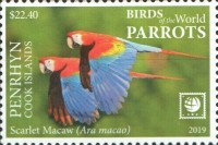 [Birds of the World - Parrots - White Frame, type AAW]