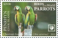 [Birds of the World - Parrots - White Frame, type AAX]