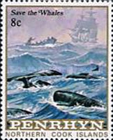 [Protection of Whales, type II]
