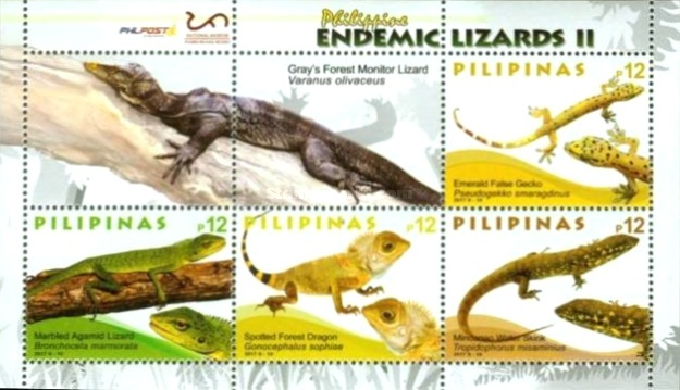 [Lizards of the Philippines, Typ ]
