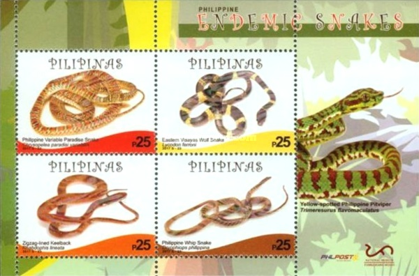 [Snakes of the Philippines, Typ ]