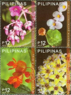 [Endemic Flowers of the Philippines, Typ ]