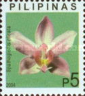 [Orchids, Typ GYV]