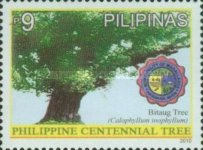 [Tourism - Oldest Tree in the Philippines, Typ IVQ]